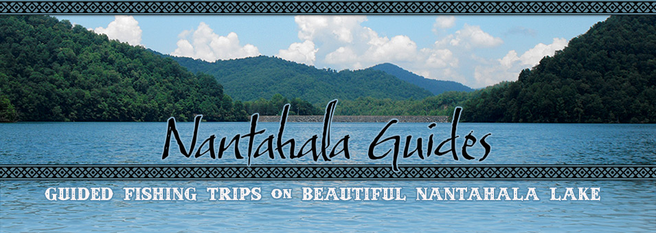 Nantahala Lake Fishing Guide Dale Raxter